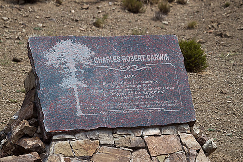 <p>We birded in the footsteps of Charles Darwin! Wow, can you believe that. </p>