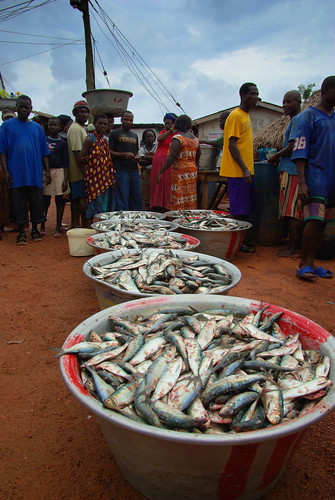 Private Sector / Fish market in Ghana, Africa. Photo by David Mills, 2010.