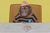 Singerie [detail] (Leo Reynolds) Tags: party sculpture art canon eos monkey chimp tea iso400 installation 7d f80 teaparty 115mm 0008sec hpexif leol30random xleol30x xxx2012xxx