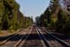 Hobo's Landscape (buffdawgus) Tags: northerncalifornia tracks railroadtracks menloparkca canon7d lightroom4 topazsw