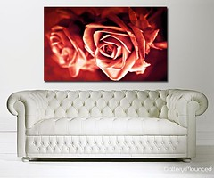 RED ROSES (Canvas Art Shop) Tags: flowers art floral wallart posters prints homedecor flowerart floralprints canvasart canvasprints flowerprints flowerwallart flowercanvasprints flowercanvasart