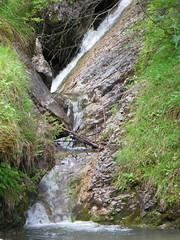 Wodospad Kamionki 9 (Hejma (+/- 4200 faves and 1,3 milion views)) Tags: green nature water rock waterfall flora stream poland polska