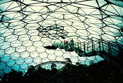 Bridge over Eden (Cloni) Tags: bridge film lomo lca xpro lomography crossprocessed edenproject crossprocessing dome eden agfa agfaprecisa xprocessing precisa