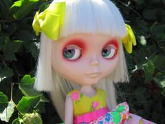 Shiny eyes (Helena / Funny Bunny) Tags: doll vampire velvet blythe custom sbl minuet reroot mircalla funnybunny mircallakarnstein countessmircallakarnstein fbfashion