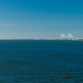 Golden Isles Marina 1