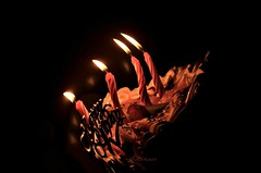 Dancing Candles  [Explore] (<Autumnn>) Tags: birthday cake fun nikon candle joy happiness celebration birthdaycake occasion explored dancingcandle