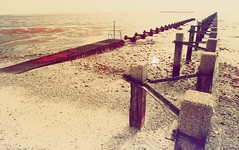 The Red Tide (danny.rowton) Tags: infrared film 35mm aerochrome nikonf2 southendonsea southend beach shoeburyness alien dannyrowton invisiblelight fpp deanbennici