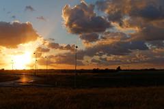 Road II (Metalhund) Tags: holbk denmark goldenlight sunset night road
