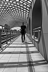 tram stop (O.Krger) Tags: hannover niedersachsen deutschland germany bahn streetphotography sw schwarzweis streetlife sation bianconero bw blackwhite peopleinthecity people monochrom urban strassenbahn tram stop