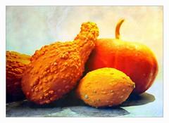 cucurbitacs (overthemoon) Tags: switzerland suisse schweiz svizzera romandie vaud prangins chteau caf gourds pumpkin cucurbitaceous yellow orange texture frame stilllife naturemorte stillleben
