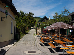 _C203814-flickr.jpg (laurenz.lanik) Tags: neustift vienna