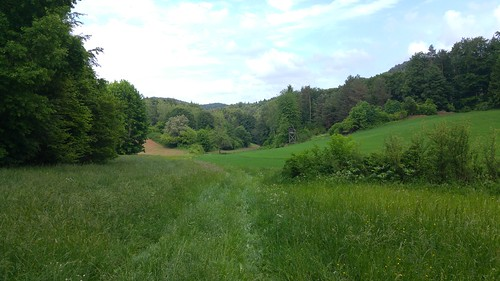Einsames Tal in der Oberpfalz