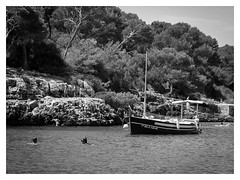 Mallorca Monochrome  I (Vintage lens lover) Tags: bw sw mallorca landschaft meer boote