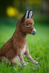 Donkey_11 (kdc123) Tags: donkey furred breyer custom ooak chestnut miniature