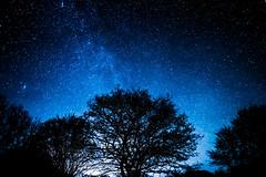 Blue Sky (mnicol13) Tags: night nuit stars toiles blue sky ciel pose longue nikon d3200 hiver iso bleu bretagne cotes darmor