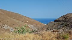 Heading Keratokampos (zanderlv) Tags: crete greece keratokampos olives sea travel