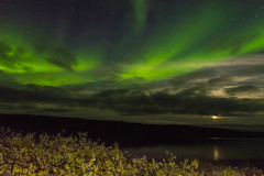 Northern Moon Light-9056 (Mathieu Dumond) Tags: canada arctic nunavut kugluktuk coppermine river night september fall dark clouds moon northernlights aurora borealis water reflection green mathieudumond umingmakproductionsinc willows autumn inexplore
