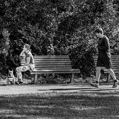 A little bit angry (John Riper) Tags: johnriper street photography straatfotografie rotterdam square bw black white zwartwit mono monochrome netherlands candid john riper fuji fujifilm xt1 18135 people girl green trees wood forest dog angry sitting bench grass summer kralingse bos