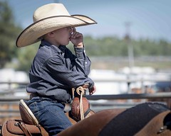 Cowboy (_bobmcclure_) Tags: ajra rodeo cowboy williams arizona
