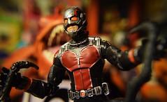 Ant-man (six-inch scale) (TaglessKaiju) Tags: antman marvel comic movie hero hank pym scientist toy figure fish teeth scott lang