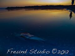 Salton Sea-550 (Freund Studio) Tags: california nature desert cities saltonsea wwwfreundstudiocom nikoncoolpixp7100 ~danfreund2012allrightsreserved