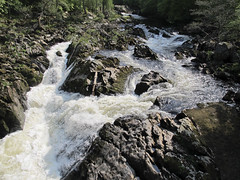 River Feugh, Scotland (hapy2beme1863) Tags: greatbritain camping trees england tree forest river landscape outdoors scotland fishing whitewater stream kayak hiking canoe rapids trout spawn spawning slamon