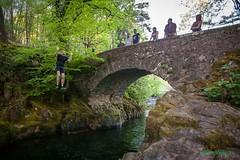 Bridge jumping (Dave Wilson Cumbria) Tags: bridge trees tree water field river fun photography moving jump swing eskdale