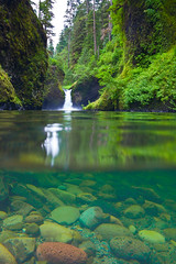 Split Underwater and Above Water View of Punchbowl Falls (Lee Rentz) Tags: usa water oregon america creek reflections waterfall stream underwater view northwest surface falls falling clear reflected pacificnorthwest northamerica split columbiagorge streambed columbiarivergorge botton eaglecreek riverbottom punchbowl creekbed eaglecreektrail camerahousing punchbowlfalls columbiarivergorgenationalscenicarea creekbottom streambottom
