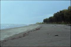 Everything's Not Lost . (asylumthebends [in limbo]) Tags: beach shoreline epson 135 35 seashore nikonfm2 theb testroll v700 everythingsnotlost thebends bachok imcominghome nikkor5014ais panpanpan asylumthebends efinitisuperuxi200 pantaikemasin