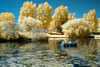 Infrared Boating lake (Mark (marbo)) Tags: lake boat infrared 590 a480 590nm