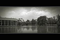 Lake in the Grasshopper Hill (Ivn Adrin) Tags: naturaleza lake mexico lago bosque