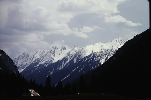 View of Lidderwat Mountain, Kashmir