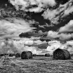 saving the hay (zip po) Tags: ireland blackandwhite clouds mono hay leitrim drumshambo
