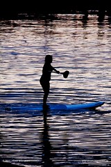 sized_20110108-IMG_8075 (Koen Blanquart) Tags: new newzealand islands bay russel zeeland zealand bayofislands kiwi nieuwzeeland nieuw nouvellezeelande