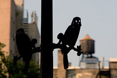 Perched, Lower East Side (doug turetsky) Tags: newyorkcity lowereastside streetsculpture sararooseveltpark