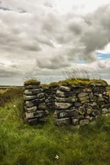 KeighleyMoor_21 (atkiteach) Tags: rural pen walking bradford sheep moors fold westyorkshire dogwalking moorland penfold keighley keighleymoor hiddenbradford hiddenbradfordyorkshire