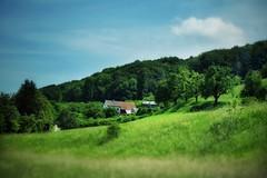 It's a sunny day (NadzNidzPhotography) Tags: nadznidzphotography nature naturephotography naturallight natures snapseed snapseedforios snapseedforiphone sky skies farm farmhouse trees tree travel travelers traveldestination traveling travelphotography green landscape rollinghills hillside hills sunny shadows fujifilmxt10 fujifilm fujinonxf1855mmf284rlmois fujinon fuji fujinonxf1855mmf284rlmoislens fujixt10 destination