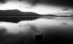 Derwent Water. (bhp1956) Tags: landscape monochrome water lakedistrict reflection rocks cumbria derwentwater lake evening blackwhite clouds