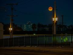 strawberry moon over the arts district (Dan M. Thompson) Tags: moon strawberrymoon la losangeles westcoast nightsky cityscape citylights citylife fullmoon nikkor nikon d800e d800 inexplore west artsdistrictla explore manfrotto bridge westside