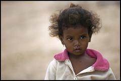 DSC_6961 (Sgaffo) Tags: yemen travelling 20072008 socotra