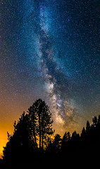 From a Pale Blue Dot '16 (modesrodriguez) Tags: milkyway sky night nightscape stars longexposure highiso tree silhouette panorama vertical