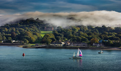 Cotton candy coastline (snowyturner) Tags: mist estuary tamar boat hills evening trees coast