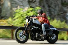 Harley-Davidson Sportster 1608203604w (gparet) Tags: bearmountain bridge road scenic overlook motorcycle motorcycles goattrail goatpath windingroad curves twisties outdoor vehicle