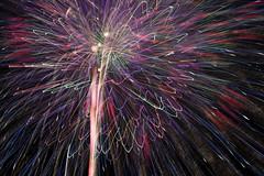 FIREWORKS No.3 (ajpscs) Tags: ajpscs japan nippon  japanese  tokyo  nikond750 edogawa  ichikawa  koiwa  edogawahanabitaikai     night viewtokyoyakei  fireworks festival summer nightshot nightphotography natsu   artoffireworks tokyosummerfireworksfestival fireworksfestival  hanabitaikai 2016 fireworksofsummer lightfantasy summerfireworks 41 the41thedogawafireworksfestival 32 sparklersinthesky fireworksno3