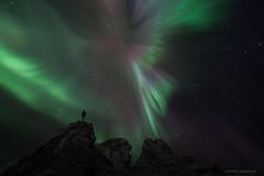 Visiting a Troll Graveyard (Frijfur M.) Tags: strangerockformation northernlights norurljs nordlicht iceland sland canon5dmarkii samyang14mm stars