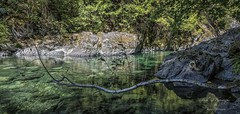 Harris Creek - an emerald green creek on a hot summers day! (Freshairphotography) Tags: harriscreek pacificmarinecircleroute creek waterflow water rocksandwater rocks vancouverisland explorebc explorevancouverisland explorecanada emeraldgreen boulders forest canyon beautifulbc highway14 pool