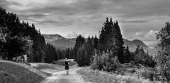 Crossing the French Alps (gerritdevinck) Tags: bw zwartwit zwartwitfotografie naturallight natuur nature natuurfotografie naturephotography france frankrijk frenchalpes lesgets alpen gerritdevinckfotografie gerritdevinck beautifulclouds beautifulplace fujifilm fujifilmx100s fujifilmseries x100s