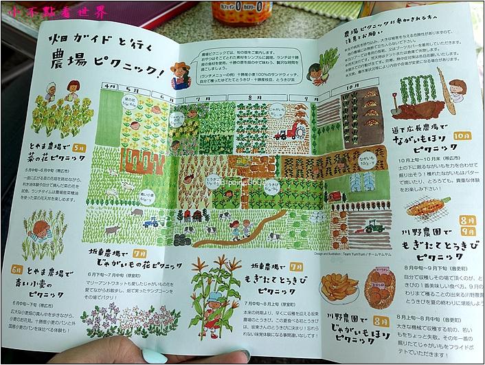 川野農場 DIY採玉米 (24).JPG