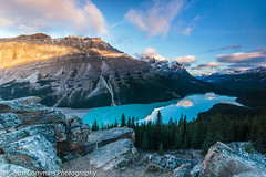 Peyto Lake sunrise (Kieran Commins) Tags: peyto lake canada landscape trees rockies