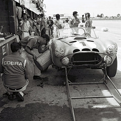 Shelby Cobra at Sebring 1964 (Nigel Smuckatelli) Tags: auto classic cars race speed vintage classiccar automobile cobra racing prototype passion legends shelby vehicle autoracing endurance motorsports fia csi 1964 sportscar wsc heures ennstalclassic world johnmorton sportauto autorevue carrollshelby historic championship louis shelbyamerican legends oldtimersport kenmiles histochallenge manufacturers gp motorsports nigel smuckatelli galanos manufacturers 1964sebring12hourgp